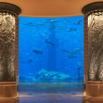 Atlantis the palm aquarium photo