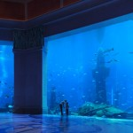 Atlantis the palm hotel aquarium