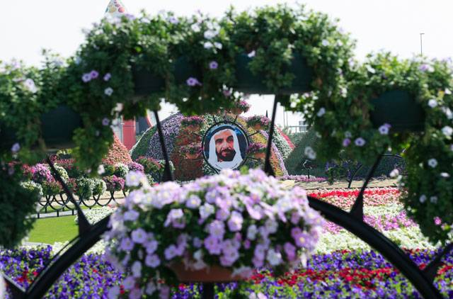 dubai miracle garden photo