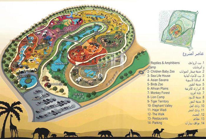 Дубай зоопарк новый куплю квартира в дубай